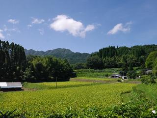 B-ai-0404.jpg