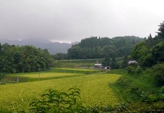 B-ai-0618.jpg