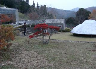 B-asakura-5093.jpg
