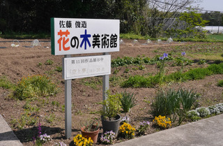 B-hana-0908.jpg