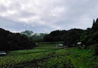 B-kita-20101-1.jpg