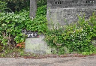 B-lam-0244.jpg